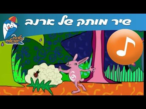מותק של ארנב