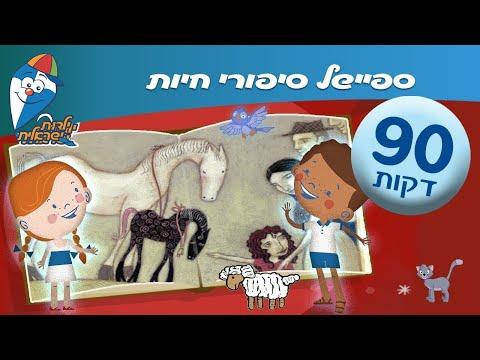 ספיישל סיפורי חיות  – סיפורי ילדות אהובים