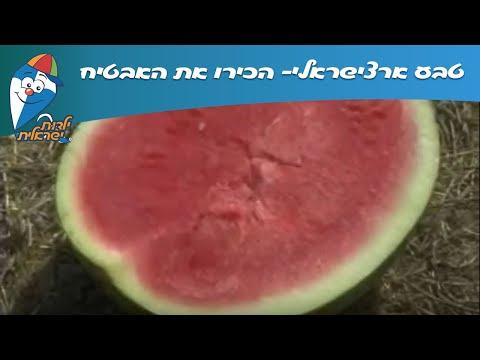 טבע ארצישראלי: הכירו את האבטיח!